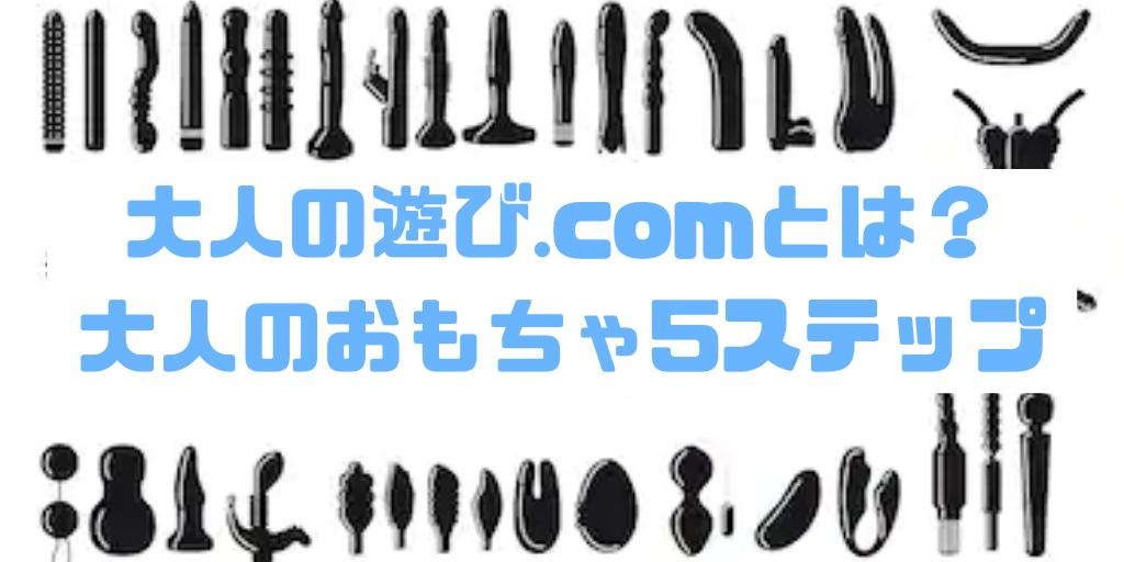 大人の遊び.comとは?大人のおもちゃ5ステップ